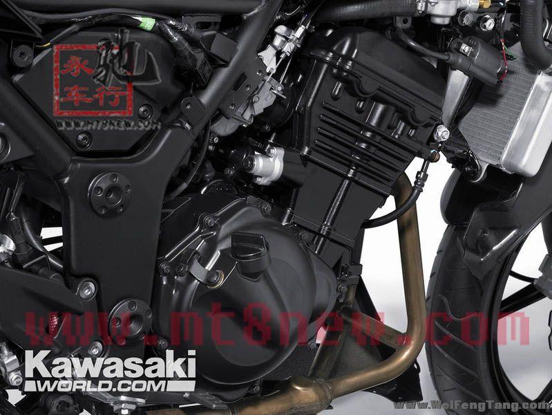 全新川崎小忍者 Kawasaki Ninja250R 接受预定 图片 1